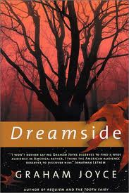 "A Lucid Dreaming Cautionary Tale: Graham Joyce's ""Dreamside"" by Kelly Bulkeley"