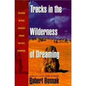 Tracking Robert Bosnak's Dreams by Kelly Bulkeley