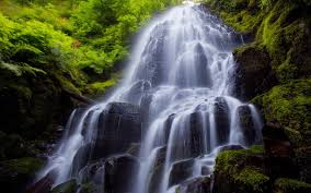 """""""Falling Water"""" and the Vasty Deep by Kelly Bulkeley"""